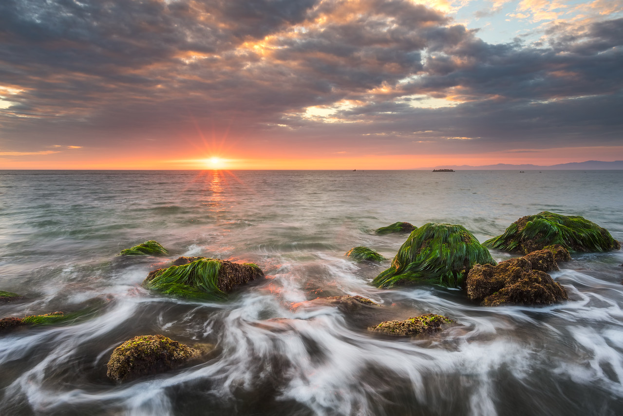 Palos Verdes sunset seascape with seagrass