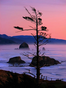 Haystack Rock at Dusk