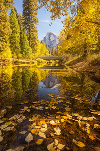 Half dome and Sentinel bridge framed by autumn and reflected in the Merced, Yosemite National Park