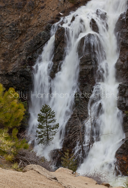 Lake Davis Reservoir Waterfall #2