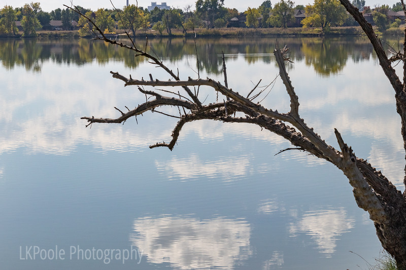Leaning Over the Reflections