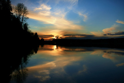 Serene sunset on water with silhouette of trees