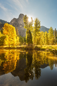 Backlit fall trees, Yosemite National Park
