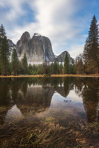 Cathedrals reflecting with foreground grass, Yosemite National Park