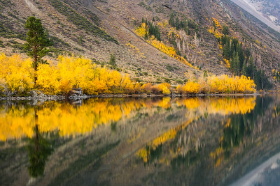 Convict Lake fall aspen reflections
