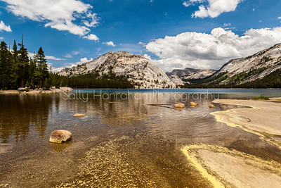 Tenaya Lake ~ Yosemite