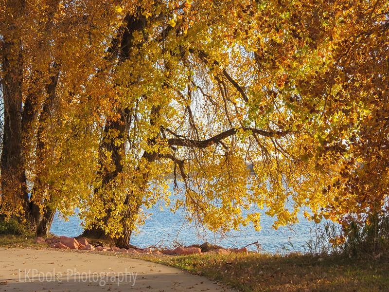 Fall Along Boyd Lake