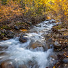 Galena Creek Fall  ~  Washoe County Nevada