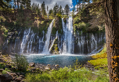 Burney Falls ~ Mt Shasta Trinity National Forest