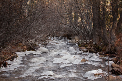 Galena Creek Ice