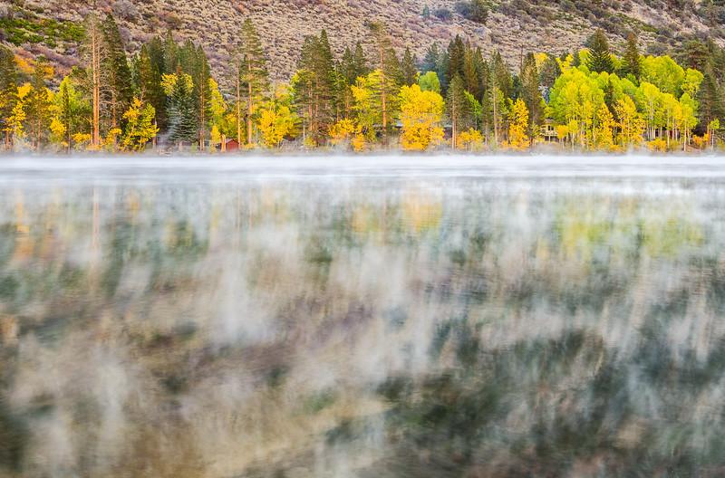 Foggy Silver Lake, Eastern Sierras