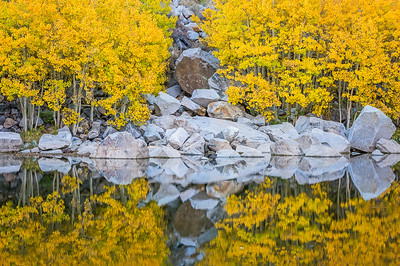 Fall colors and reflections, Aspendell CA