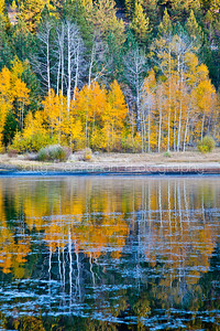 Reflections of Spooner Lake
