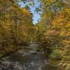 Autumn, Cataloochee Creek