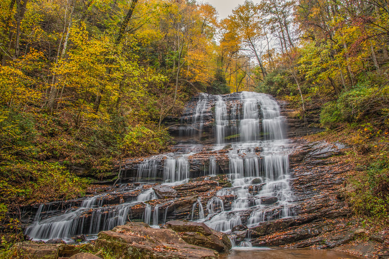Autumn At Pearson's Falls