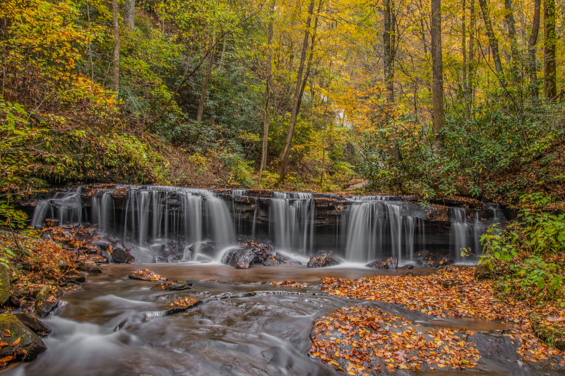 Lower Falls -Pearson's Falls