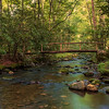 Quiet Stream - Cataloochee Valley