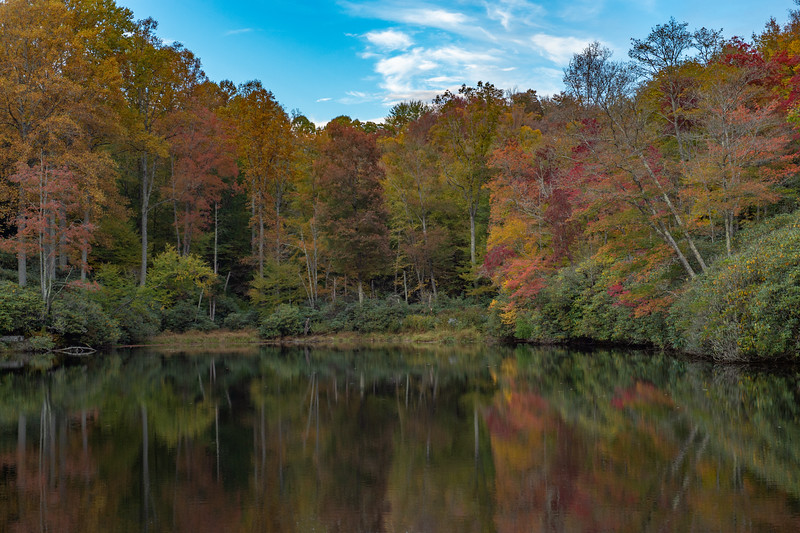 Autumn At Sims Pond