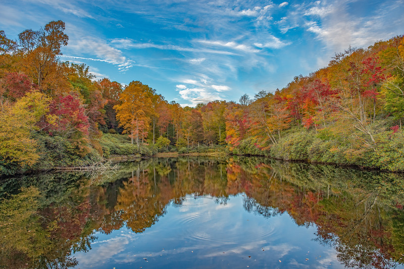 Sims Pond