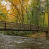 Autumn's Footbridge