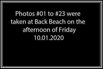 Lancelin_Kitesurf_10-12 01 2020-0