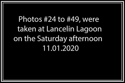 Lancelin_Kitesurf_10-12 01 2020-49b