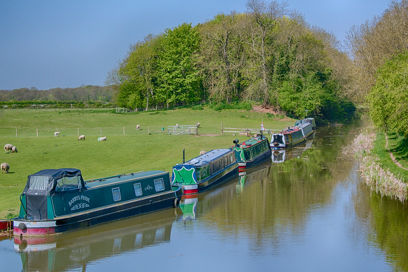 Ashby Canal – Shakerstone