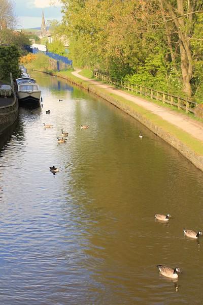 Ashton Canal – Ashton-under-Lyne