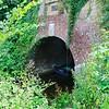 Basingstoke Canal – Greywell