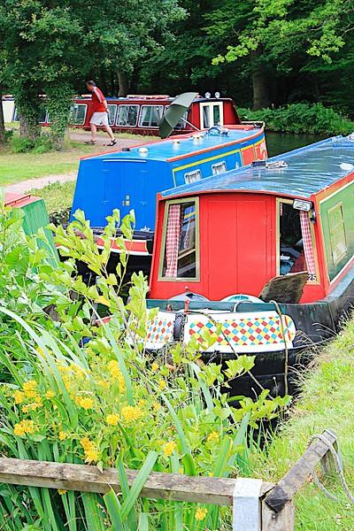 Basingstoke Canal – Mytchett