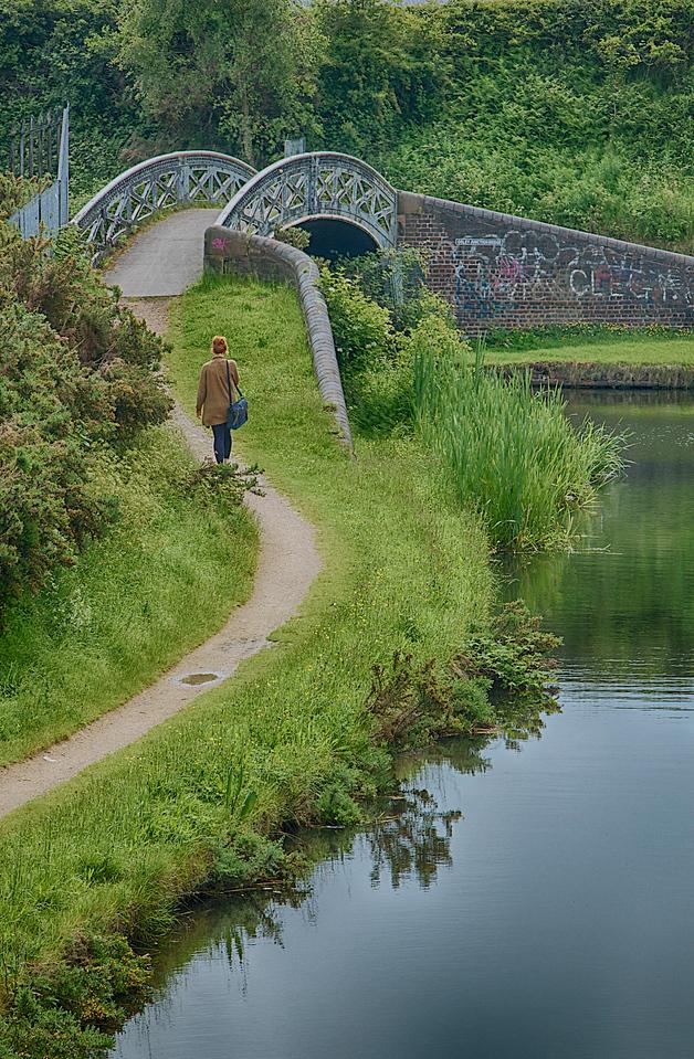 BCN – Anglesey Branch/Wyrley & Essington Canal
