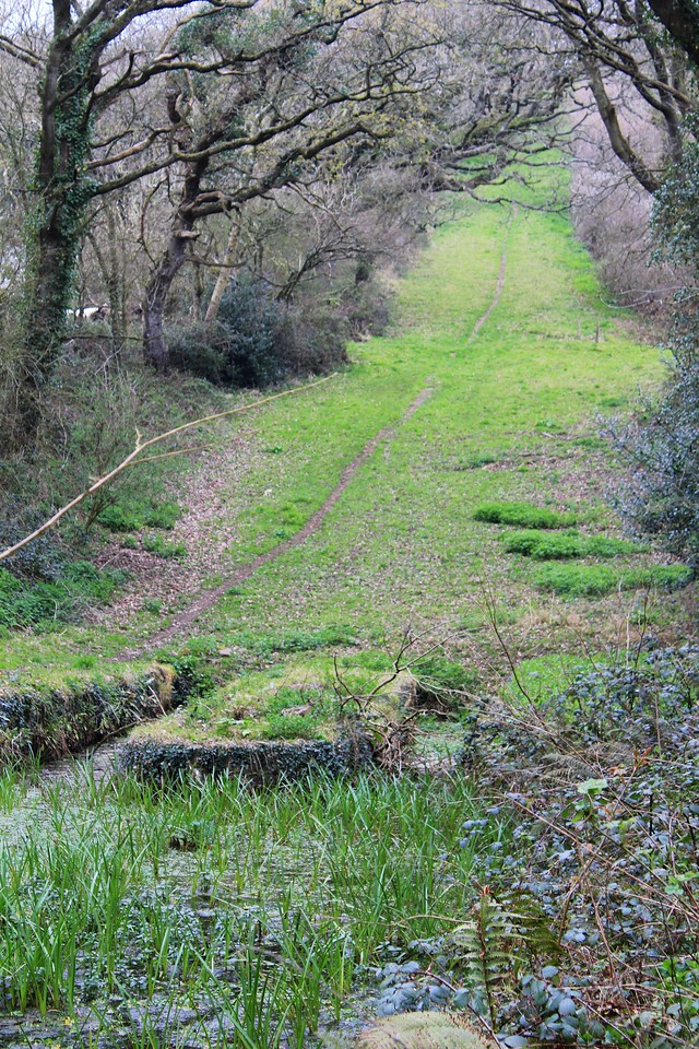 Bude Canal – Hobbacott Down