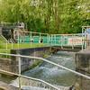 Caldon Canal – Hanley