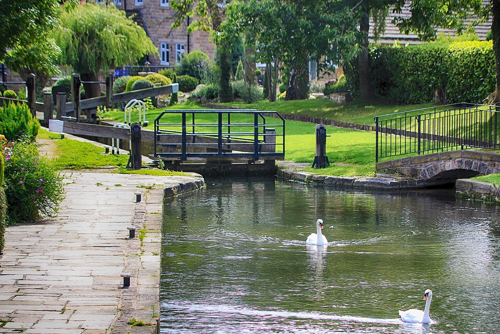 Chesterfield Canal – Turnerwood