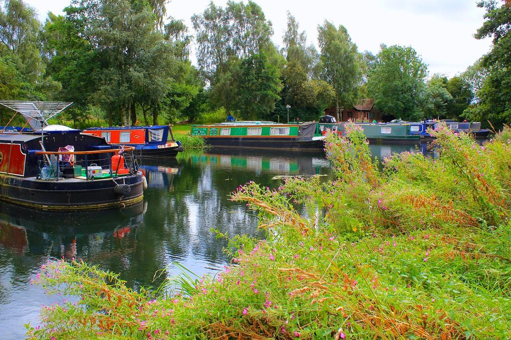 Pocklington Canal – Melbourne