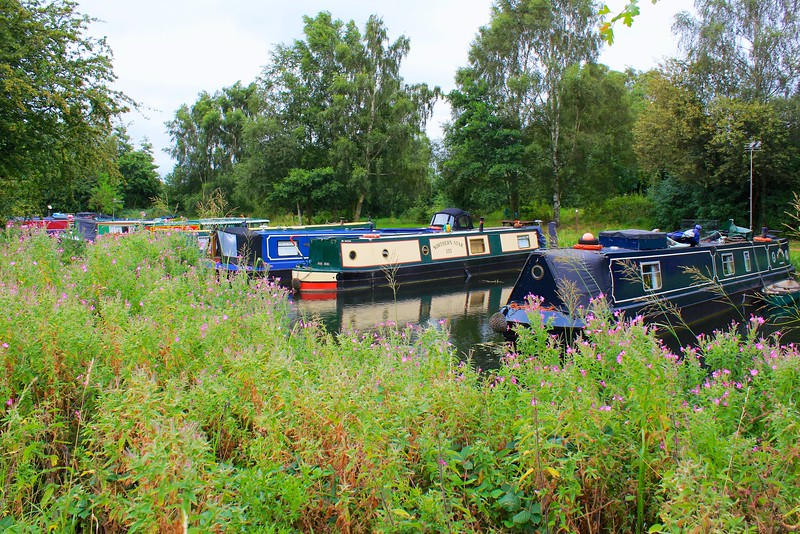 Pocklington Canal – Melbourne