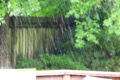 rain 067
