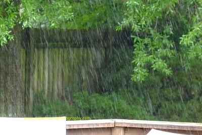 rain 066
