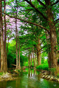 Cypress Creek, Comfort, Tx