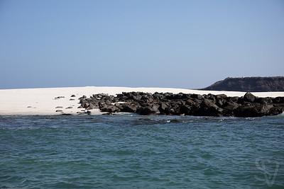 watt Galápagos