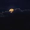 Pink Moon Peeking