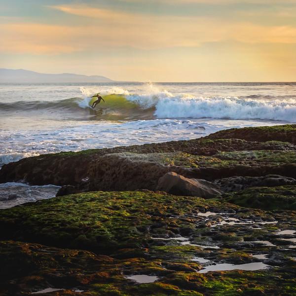 Rockcliff Surfeer
