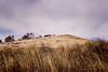 Estero Hill