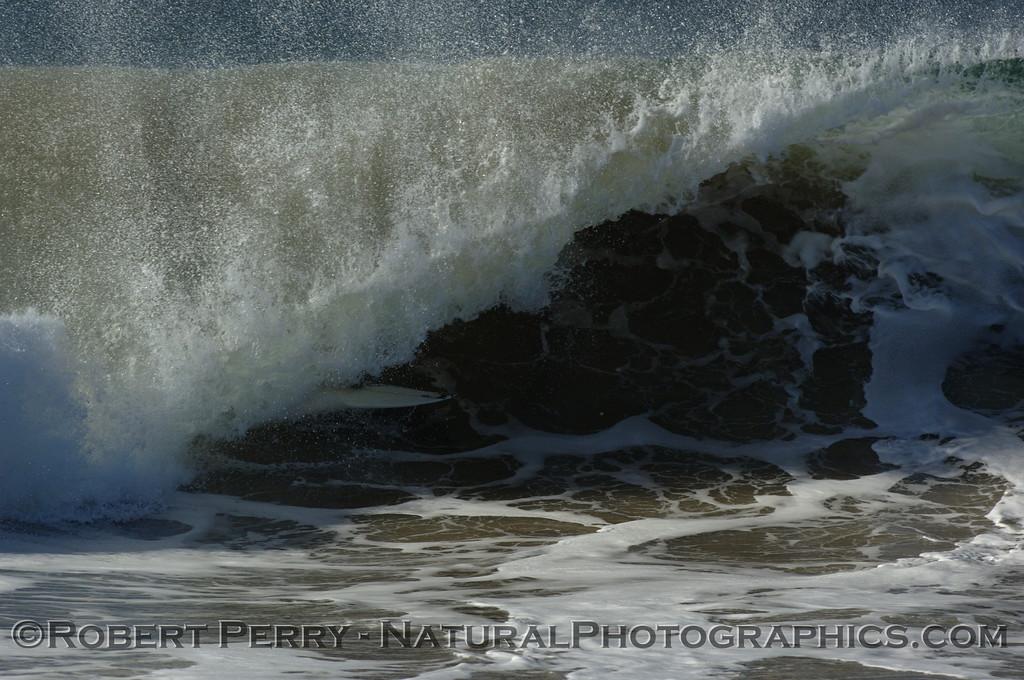 surfing 2007 10-22 Zuma -- 157