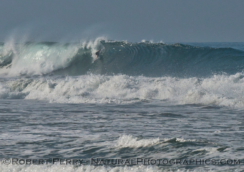 bodysurfer wave 2014 07-06 Zuma-041