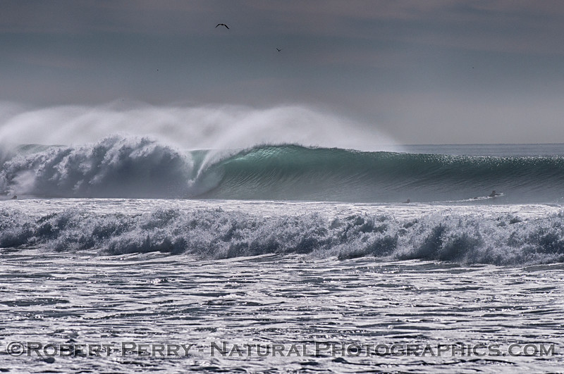 Waves 2014 12-24 Silver Strand-111