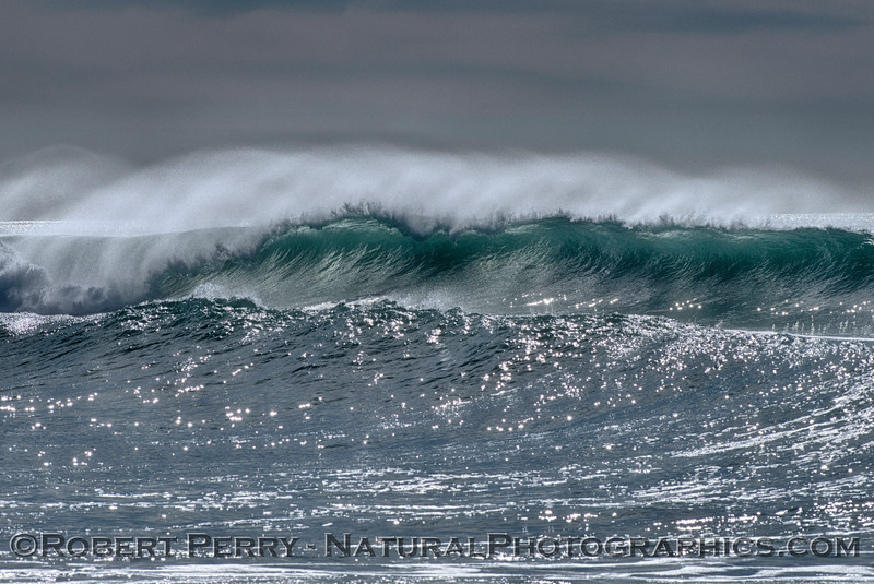Waves 2014 12-24 Silver Strand-228