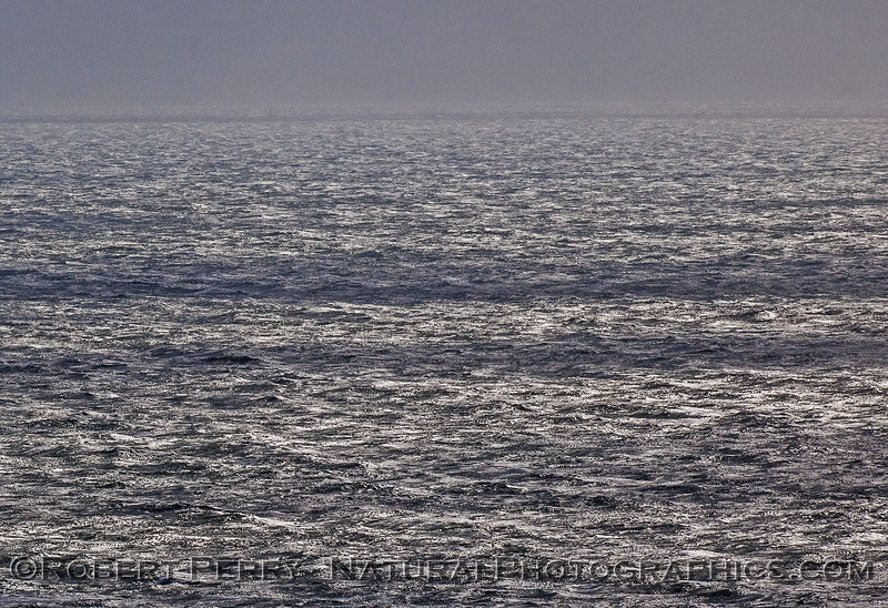 Rough seas - Ventura California