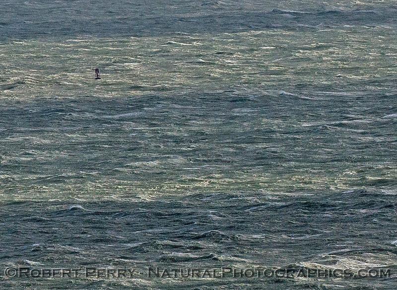 Harbor entrance buoy, Ventura California - gale force winds.