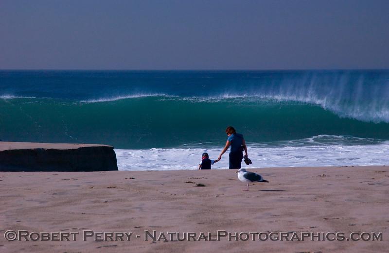 QQQ-mom and boy and gull - Big Waves surf 2007 12-05 Zuma - 1138mod